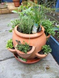 herb-pot-2