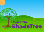 Supporting our Shadetree Kids with Treat Bags
