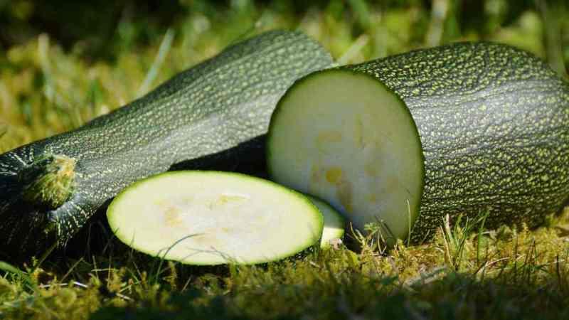 le-zucchine-cosi-devi-proprio-provarle:-senti-che-bonta-porti-in-tavola!