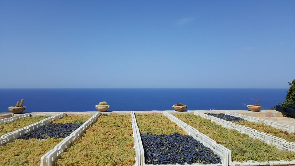il-20-luglio-in-sicilia-si-celebra-il-malvasia-day