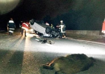 operatore-sanitario-muore-a-30-anni-per-incidente-stradale