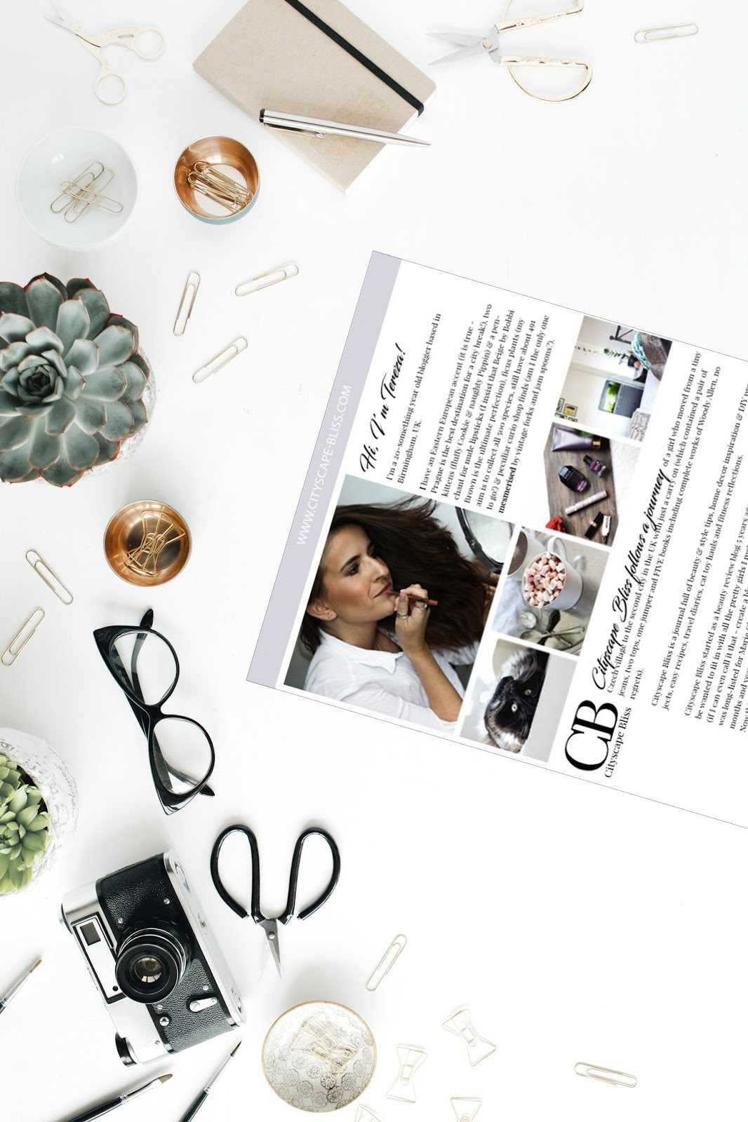 Blog media kit - why bloggers need a media kit?