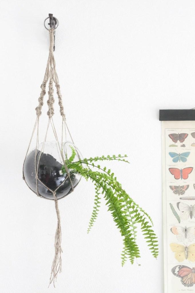 DIY hanging macrame planter