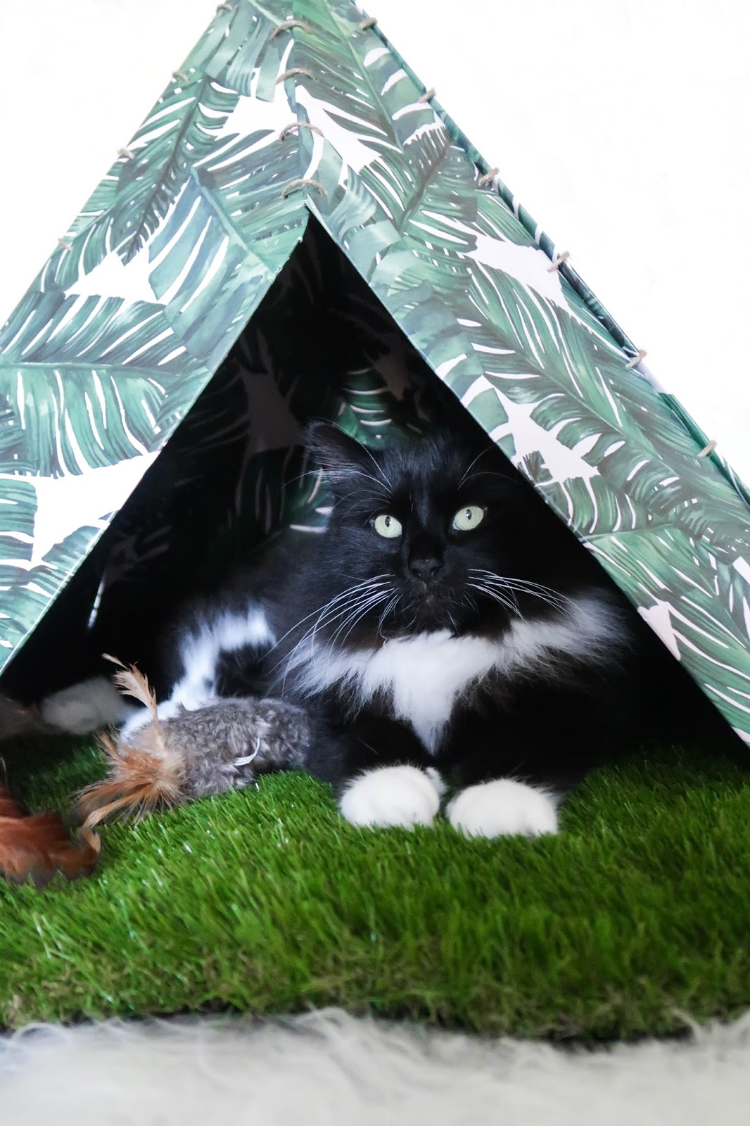 DIY Easy Cat Teepee (all you need is £5 & 1 spare hour to make this!)