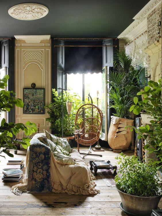 Indoor jungle garden