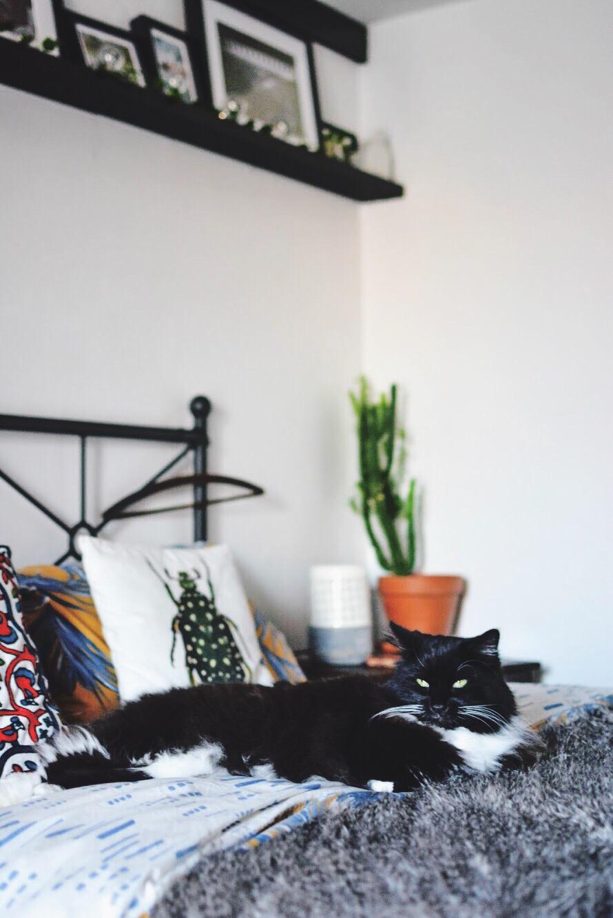 aPRAGUEment 101: How to plan your bedroom update