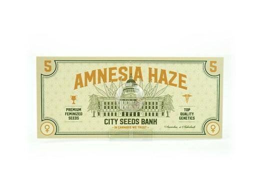 Amnesia Haze Feminised