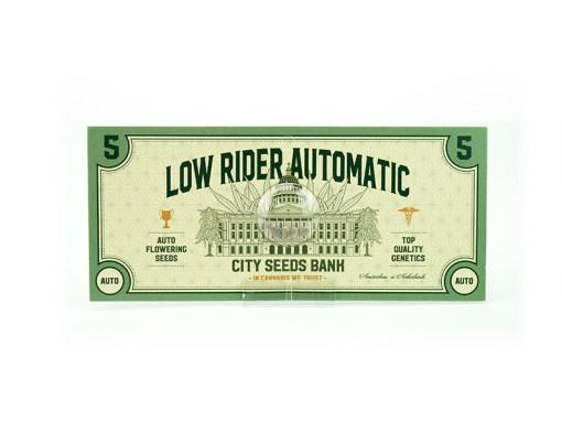 Low Rider Auto