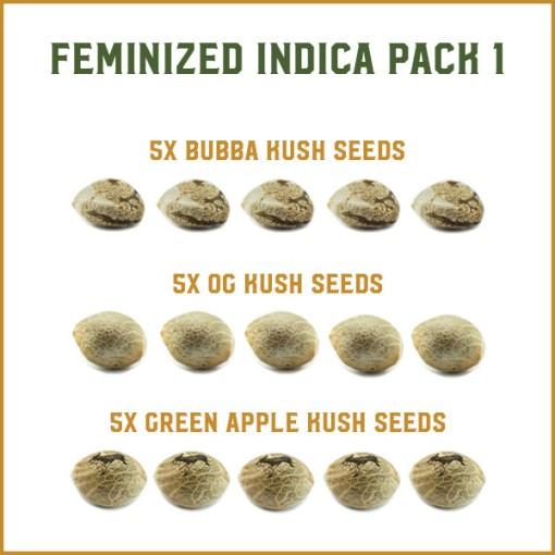 Feminized Indica Pack 1