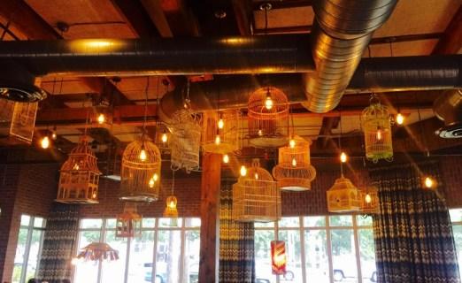 birdcages 72dpi