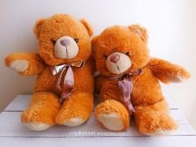 teddybearhug