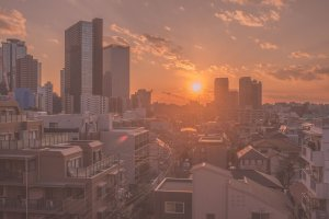 Moving from planning to action. How ICLEI is helping to accelerate the transition to net zero