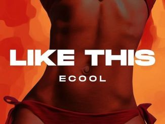 DJ Ecool – Like This