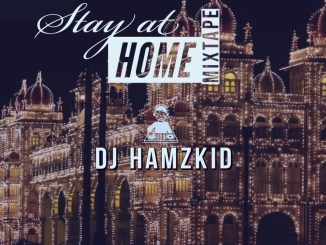 DJ Hamzkid Stay At Home Mix mp3 image