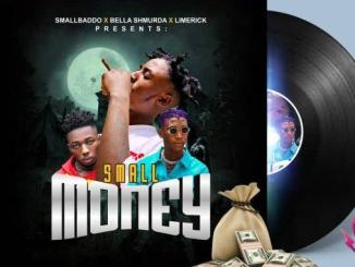 Small Badoo x Bella Shmurda x Limerick — Small Money