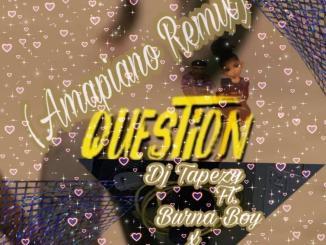 DJ Tapezy ft. Burna Boy x Don Jazzy — Question Amapiano Remix