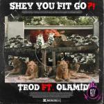 Trod ft. Olamide — Shey You Fit Go? (Instrumental)