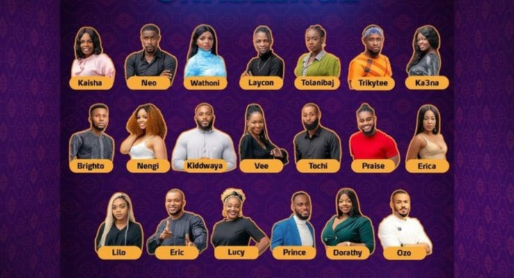 Poll – Vote for Your Favourite Big Brother Naija 2020 Housemate