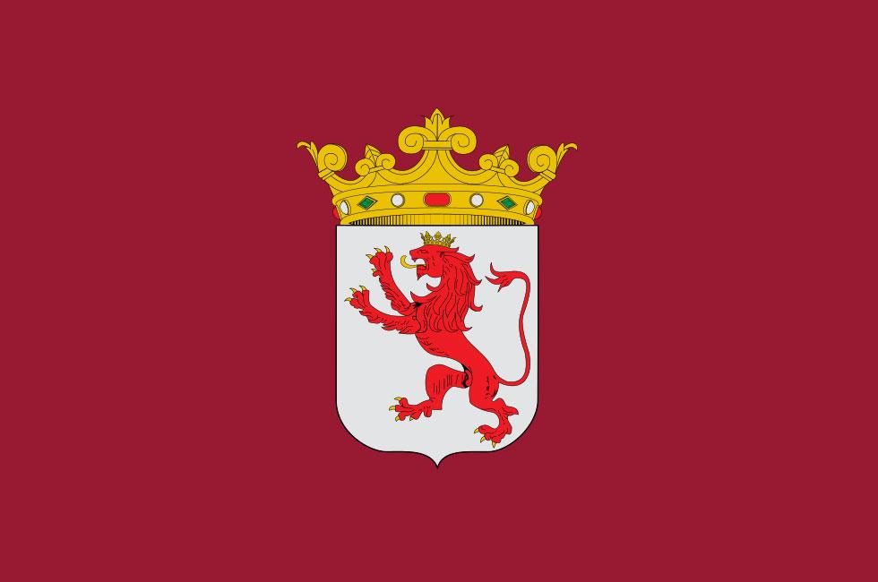 Bandera de León