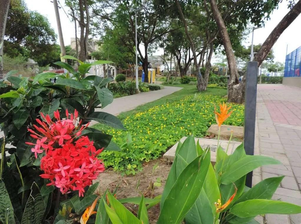 Barranquilla ha venido impulsando una destacada estrategia de recuperación de espacios verdes.