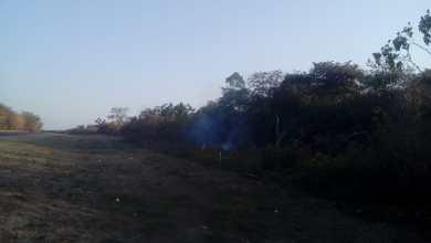 Photo of Se registraron Incendios en colectora Tartagal-Mosconi