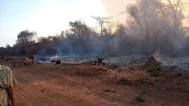 Photo of Nuevos incendios de pastizales y rige un alerta por riesgo de otros en la zona