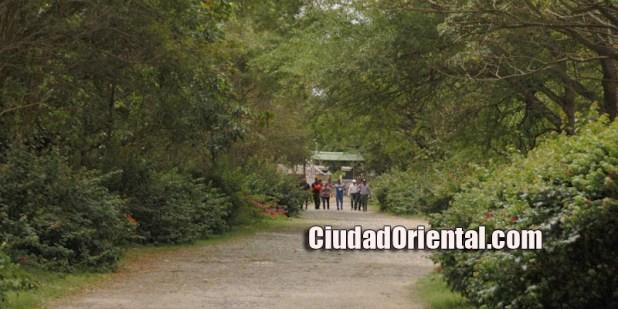 Uno de los caminos del parque que bordea al Cachón de la Rubia