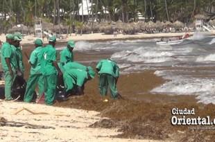 Algas invaden playas de Bávaro, Punta Cana