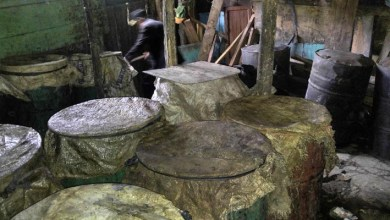 Photo of Desmantelados en San Luis cinco laboratorios de fabricación de clerén