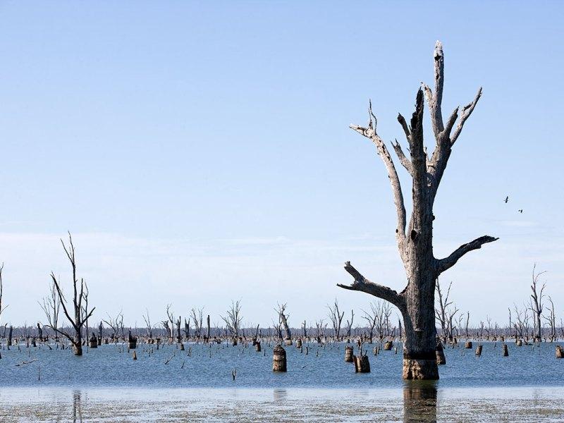 Lake Mulwala