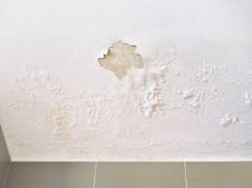 Signs of Water Damage In House | Signs of water damage In Walls