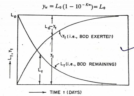 First Stage BOD Curve