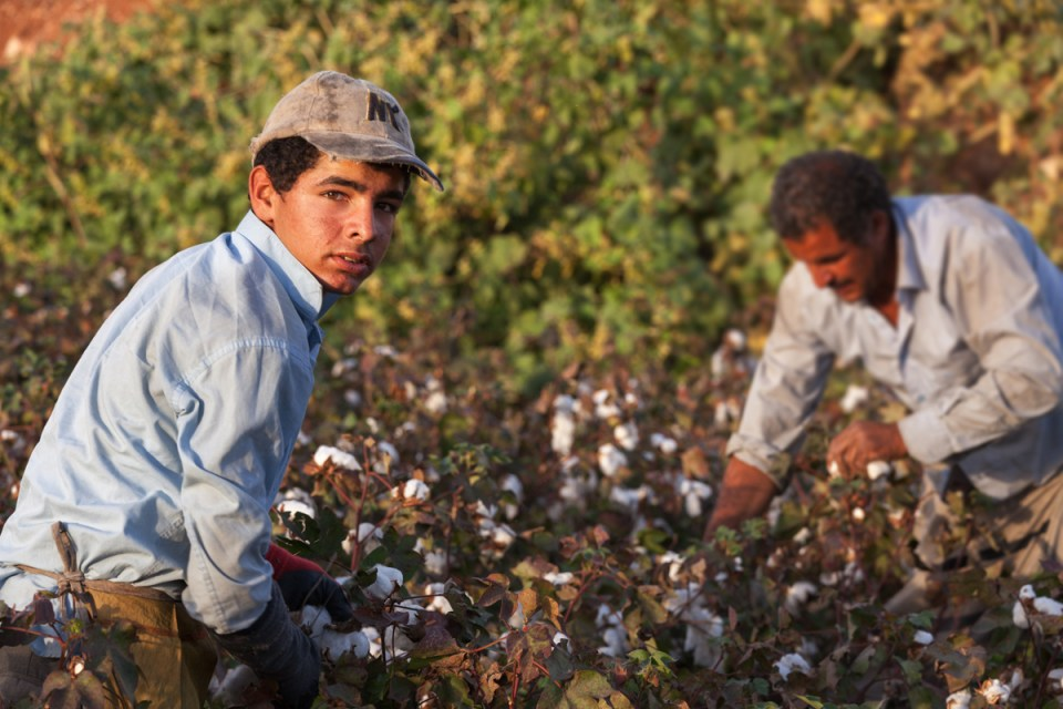Image result for Farm Workers Detained For Deportation