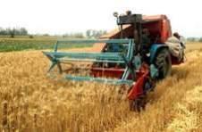 crop seasons,Rabi crop,Kharif crop,Zaid crops