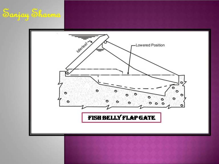 Read more about the article Fish belly flap gate