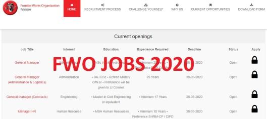 Frontier Works Organization Jobs 2020