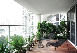 Balcony Decor with Wooden Flooring and Flower Pots