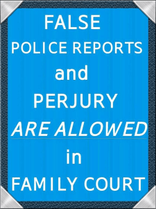 false-police-reports-20163