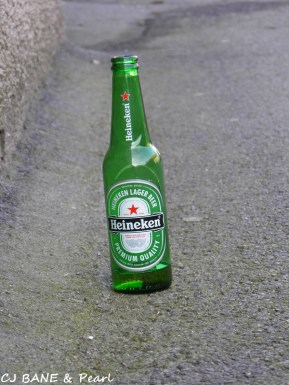Alone_Heineken