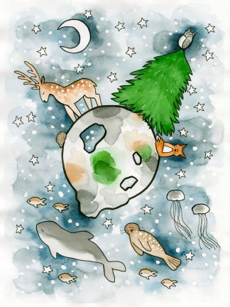 Watercolor art children illustration scandinavia cold raindeer seal porpoise fish fox hedgehog owl pine tree night moon stars
