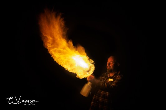 Playing With Fire 1