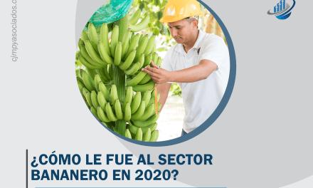 ¿Cómo le fue al sector bananero en 2020?