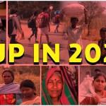 CJP in 2020