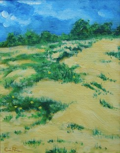 cjparis_beach-dune
