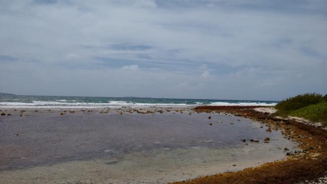 Limestone bay views