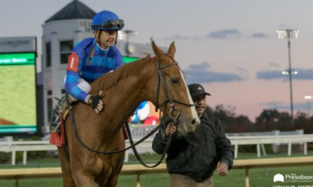 Stakes Winners Sally's Curlin, Go Google Yourself to Meet in Grade II Falls City