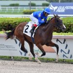 From Lexington to Ascot; The Journey of Flying Aletha