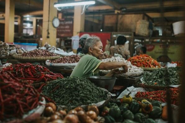 Yogyakarta et les îles Karimunjawa