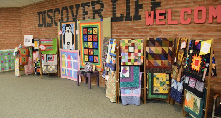 Comfort Quilts at IPM Quilt Show