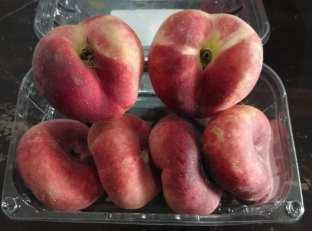 Spain Donut Peach